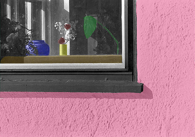Window with plants, Ithaca, NY (hand colored)